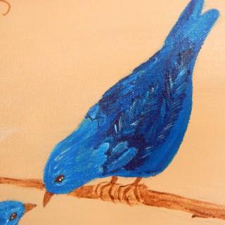malebird