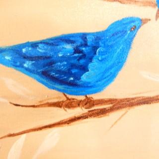 shebird